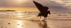 hellas-inhabitants:  Pegasus and Bellerophon ミ♡彡 Πήγασος και Βελλεροφόντης  Даже если это манипка - всё равно красиво :)
