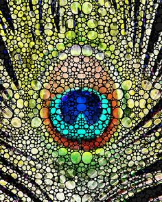 http://fineartamerica.com/featured/peacock-feather-stone-rockd-art-by-sharon-cummings-sharon-cummings.html Sharon Cummings