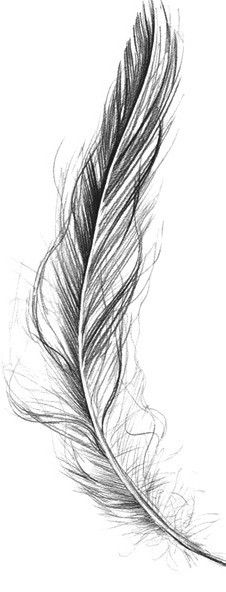 Amazing Grey Ink Feather Tattoo Design