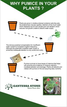 Natural pumice soil amendement increases the soil water conserving capabilities, provide oxygen to the root zone, increases circulation and makes a source of food for the plants to take. Pumice is one of a kind amendment, no other can provide the same benefits. #gardening #pumiceforplants #horticulture #gardensoil #gardenpumice Container Plants, Container Gardening, Greenhouse Benches, Soil Texture, Water Retention, Pumice, Garden Soil, Water Supply, Types Of Plants