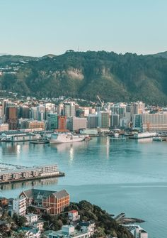 15 Best Things To Do In Wellington – New Zealand New Zealand Cities, Visit New Zealand, New Zealand Travel, Thailand Adventure, Thailand Travel, Visit Australia, Australia Travel, New York, Wellington New Zealand
