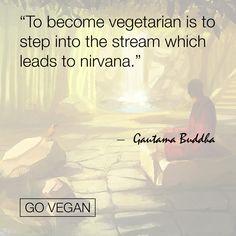 #GoVegan #buddha #quoteoftheday #quoteofthenight #quotestags #quotestagram…