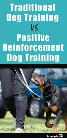 Traditional Dog Training vs Positive Reinforcement Dog Training-Positive reinforcement training teaches that certain behaviors result in a pleasant consequence and all the other behaviors result in no consequence at all.