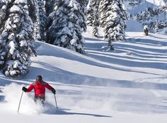 Skiing in Fernie, BC