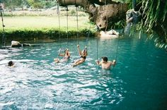 pond tree swings. I could spend all day in there!