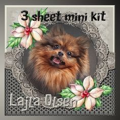 Pomeranian on Craftsuprint - View Now!