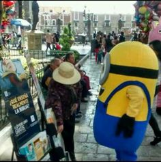 even the minions know they need spiritual food! My Minion, Minions, Minion Photos, Public Witnessing, Jw Humor, Jehovah S Witnesses, Jehovah Witness, Kingdom Hall, Jw Gifts