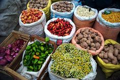 Verduras y semillas del norte