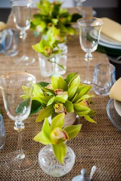 Green Orchids for the table