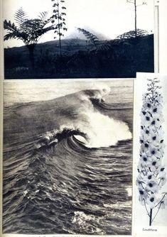 "dapfh: ""Hannah Höch, Album, c. 1933 """