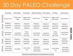 Diary of a Fit Mommy 30 Day Paleo Challenge. Come with free meal plan printables! Menu Paleo, Menu Dieta Paleo, Paleo Snack, Paleo Meal Plan, Paleo Recipes, Paleo Dinner, Paleo Meals, Paleo Breakfast, Paleo Food List