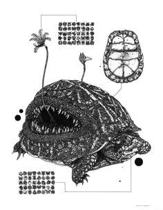 Nicholas Di Genova maneja un estilo fantástico pero con un fondo y toque científico. Sus criaturas híbridas sumamente detalladas muestran fusiones inimaginables y monstruosas; tortugas que se funden con plantas carnívoras; un gato con una cabra entre muchas más. Pintura aguada, o tinta sobre papel son sus técnicas favoritas.