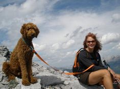 Standard poodle, hiking. He looks like a big ol' teddy bear!! Poodles are hypoallergenic and active doggies.
