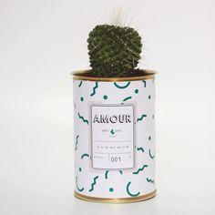 ➸ Big crush pour @aycactus, les cactus qui dépotent.  Filez sur le blog pour découvrir ce petit nouveau sur la liste de mes envies ➸