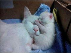 Sleeping with my mini me