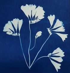 Lisa Shepherd, Textile illustrator and printer Alternative Photography, Cyanotype, Blooming Flowers, Embroidery Art, Textile Design, Hand Stitching, Flower Art, Printer, Illustrator