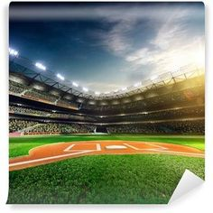 Professional Baseball Grand Arena In Sunlight Wall Mural