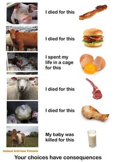 your choices have consequences; go #vegan for cruelty-free choices
