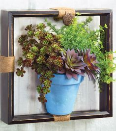 Love how this succulent vase is framed to transform it into wall decor!
