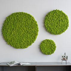 Beautiful reindeer moss frame at Forest Homes. These circles are hand built of a 100% real moss. No need for maintenance to stay evergreen. Shop green moss wall designs at Forest Homes.