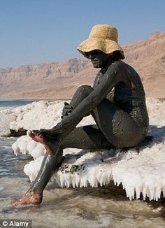 The high salt content of the Dead Sea might not be good for all lifeforms but the mud makes for a great spa treatment, get some without a passport!  http://www.seacretdirect.com/Codebreaker