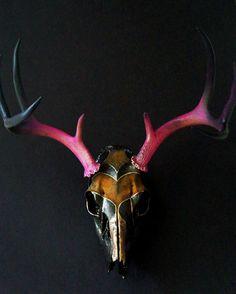 Handpainted Deer Skull Taxidermy by MyrandaE on Etsy, $196.00