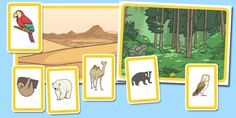 Animals and Their Habitats Matching Activity