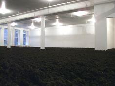 Earth room N.Y