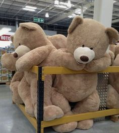 They have them at Costco for Valentines Day! :) Nite working out in the morning.