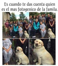 Fotogénico de la familia