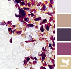 @Allie Anne: purple color inspiration