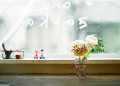 ++ photo hana**