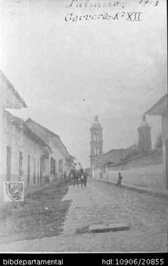 Biblioteca Departamental Jorge Garces Borrero y GIOVANNI SAA MARMOLEJO. Panorámica de la plaza de Palmira en1913 y 102859. PALMIRA: Biblioteca Departamental Jorge Garces Borrero, 1913. 10X15.