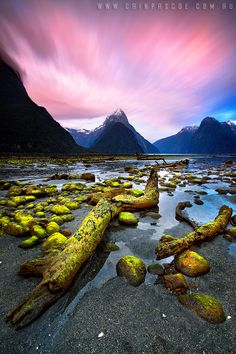 Fragments.  Milford Sound, New Zealand.  by Cain Pascoe.