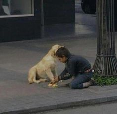 Kid with a Heart of Gold ! Homeless kid shares his food with homeless dog.