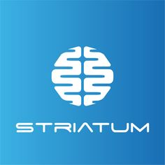 We Are Striatum. Create our logo abstract of the Brain by Lamiralio