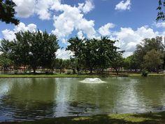 Centro de Lazer Prefeito Ederaldo Rossetti (Lagoa dos Pássaros) - Artur Nogueira - Avaliações de Centro de Lazer Prefeito Ederaldo Rossetti (Lagoa dos Pássaros) - TripAdvisor
