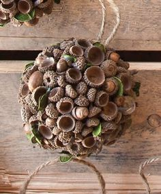 Acorn Crafts Critters Home Backyard Solutions Large Acorn Ball Acorn Crafts, Pine Cone Crafts, Diy Christmas Gifts, Fall Crafts, Holiday Crafts, Home Crafts, Christmas Time, Diy And Crafts, Crafts For Kids