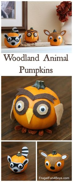 Woodland Animals Fel