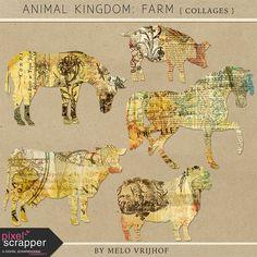 Animal Kingdom - Farm Collages by Melo Vrijhof