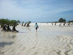 Sea's floor :). Walakiri beach, East Sumba, NTT, Indonesia
