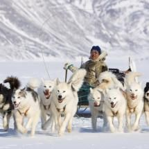 Sledding from Siorapaluk to Qaanaaq, North Greenland, by Tamas Farkas