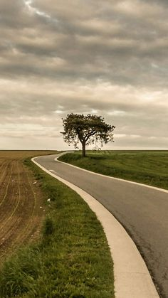 Roadside Tree Alone Field Nature IPhone Wallpaper Mobile Wallpaper Nature Iphone Wallpaper, Beautiful Nature Wallpaper, Mobile Wallpaper, Beautiful Landscapes, Iphone Wallpapers, Blowin' In The Wind, Beautiful Roads, Show Me The Way, Landscape Wallpaper