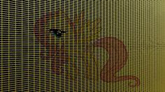 Grid Fluttershy