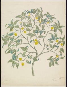 The Ornamental Tree (Wallpaper Design) | artist: Voysey | Victoria and Albert Museum