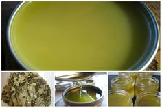herbal decongestant salve collage