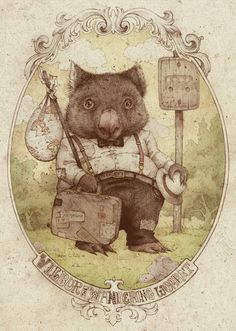 wilbur the wandering wombat, teagan white, inspired by jj grandville Art And Illustration, Creative Illustration, Illustrations Posters, Albert Jacquard, Australian Animals, Design Graphique, Watercolor Artwork, Les Oeuvres, Images