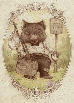 wilbur the wandering wombat, teagan white, inspired by jj grandville Animal Art, Illustrations Posters, Character Design, Illustration, Drawings, Art, Animal Illustration, Cute Illustration, Watercolor Artwork