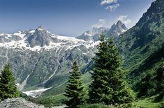 #Alpes, #montañas, #verano, #bosque, #naturaleza