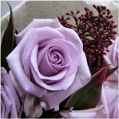 flowerism-anne_we-05 600×600ピクセル
